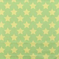 9025/大きな星と淡いグリーン